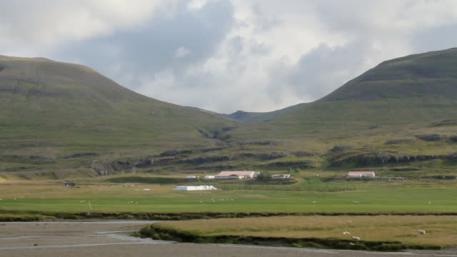 vidéos et rushes de ws view of small power plant at bottom of large mountains with sheep grazing in fields / reykjavik, hofudhborgarsvaedhi, iceland  - wiese