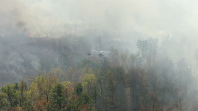 ws aerial ts view of smoke and fire in forest and helicopter flying through smoke in tuscaloosa county / alabama, united states - rescue stock videos & royalty-free footage