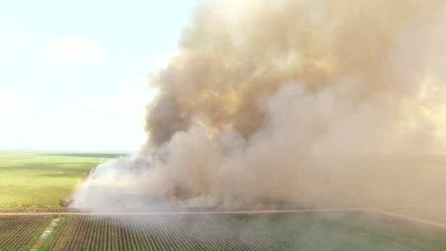 WS AERIAL TU View of smoke from burning sugarcanes and smoke in sky / Lake Okeechobee, Florida, United States