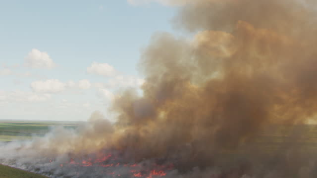 WS AERIAL View of smoke in sky and fire of burning sugarcane on ground / Lake Okeechobee, Florida, United States