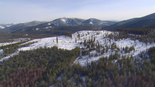 ws aerial view of snow covered clearing in montana wilderness area know yak near troy / troy, montana, united states - wilderness area stock videos & royalty-free footage