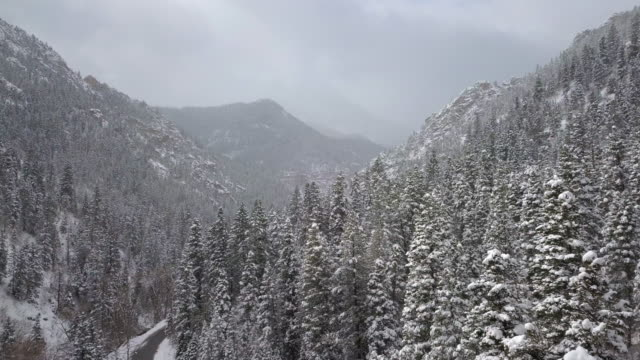 view of snow covered forest while rising above the trees - american fork city stock videos & royalty-free footage
