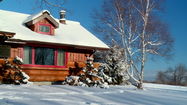 WS View of snow covered log home during winter / Tweed, Ontario, Canada