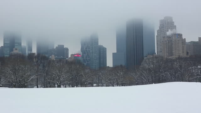 ws pan view of snow covered sheep meadow and manhattan skyscrapers which covered by cloud at central park / new york, united states - sheep meadow central park stock videos and b-roll footage