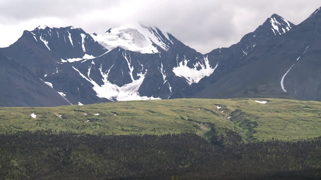 WS View of Snow covering rocky mountains in Kluane National Park and Reserve and evergreen forest / Yukon, Canada