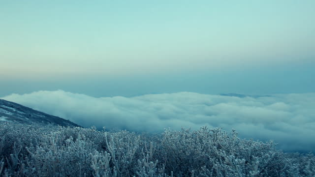ws pan view of snow covering trees in taebaeksan mountain / taebaek, gangwon-do, south korea - 1 minute or greater stock videos & royalty-free footage
