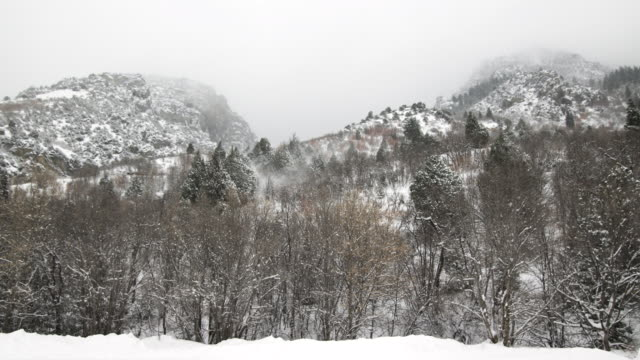 ws view of snow falling on mountains / payson, utah, usa - payson stock videos & royalty-free footage