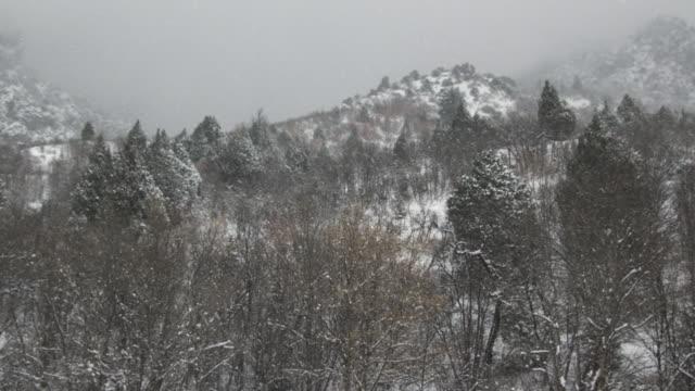 WS SLO MO PAN View of snow falling on mountains trees / Payson, Utah, USA