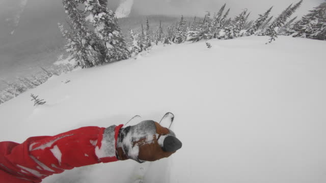 pov view of snow skiing on in fresh powder snow in the mountains. - point of view stock videos & royalty-free footage