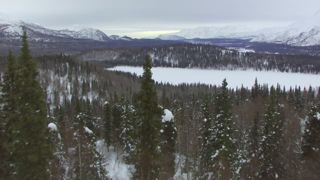 WS AERIAL View of snowy hill side with trees to frozen terrain surrounded by mountain ranges during Iditarod Trail Dog Sled Race / Alaska, United States