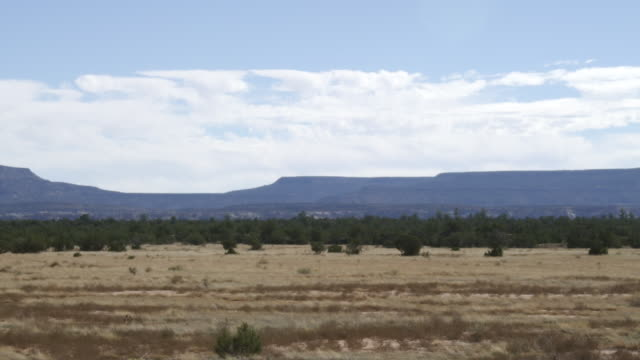 WS View of Southwestern USA terrain with blowing tumbleweed and plateaus with clouds / Grants, New Mexico, United States