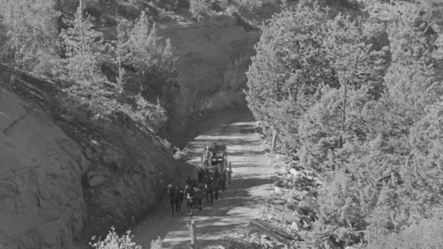 ws ts td view of stagecoach riding along mountain road - mittelgroße tiergruppe stock-videos und b-roll-filmmaterial