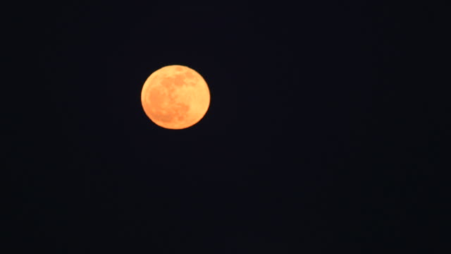ws r/f view of static full moon glows in night sky / detroit, michigan, united states - midwest usa stock videos & royalty-free footage