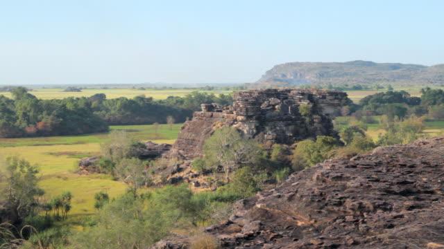 ws view of static ubiir rock with trees and skyline / northern territory, australia - wiese点の映像素材/bロール
