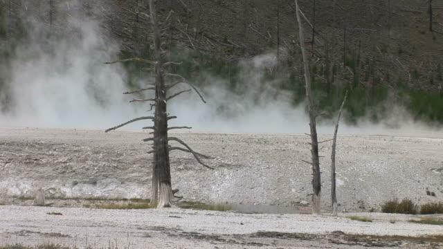 vídeos y material grabado en eventos de stock de view of steam in yellowstone national park wyoming united states - usa