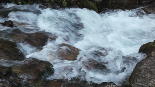 vidéos et rushes de ms view of stream of river water flowing over rocks / sundance, provo river, utah, usa - provo