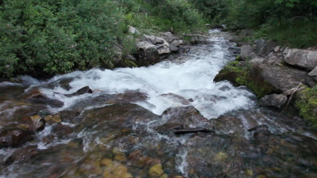 vidéos et rushes de ws view of stream of river water flowing over rocks / sundance, provo river, utah, usa - provo