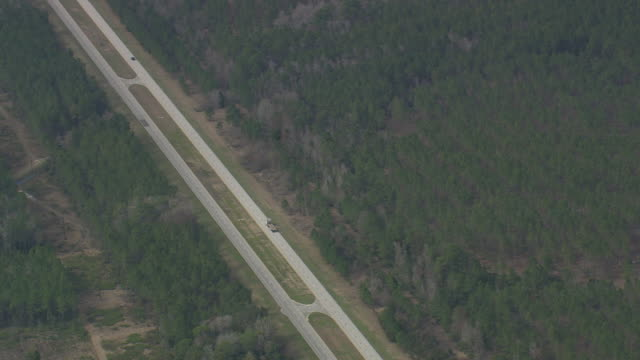 AERIAL WS View of Street between W Florida forests (Goethe State Forest) / Florida, United States