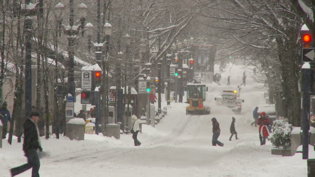 view of street in portland usa - portland oregon snow stock videos & royalty-free footage