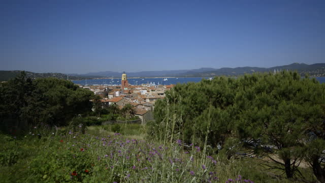 view of st-tropez through trees, france - var stock videos & royalty-free footage