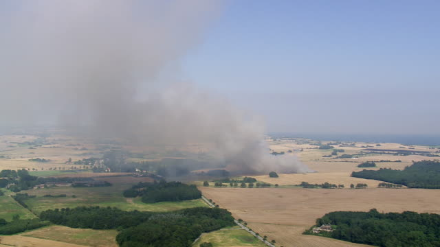 ws aerial zi view of stubble burning / mon, denmark - stubble stock videos and b-roll footage