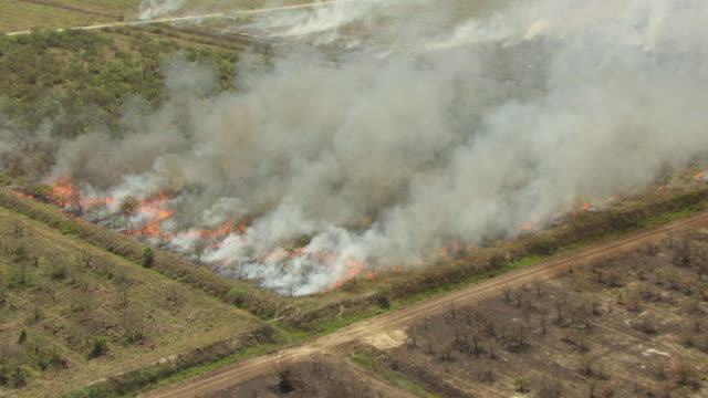 WS AERIAL ZI View of sugar cane burn / Lake Okeechobee, Florida, United States