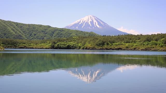 WS ZO View of summit in Mount Fuji from Lake Saiko in spring / Fujiyoshida, Yamanashi, Japan