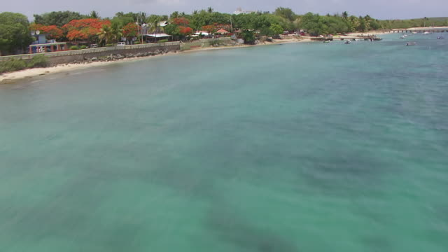 ws aerial pov view of sun bay beach at ensenada sombe / vieques, puerto rico, united states  - 2014年点の映像素材/bロール