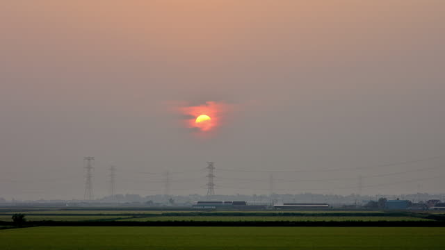 vídeos y material grabado en eventos de stock de ws t/l view of sun rising on rice paddy / asan, chungcheongnam do, south korea  - torre de conducción eléctrica