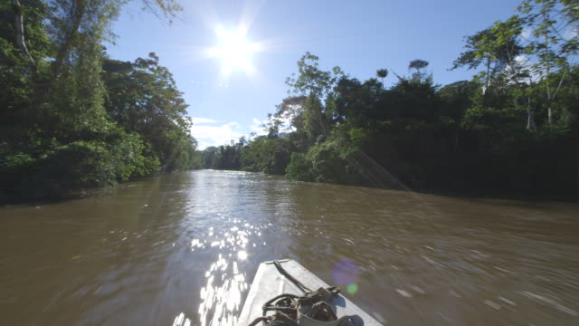 WS POV View of sun shines as boat going down Amazon river / Peru