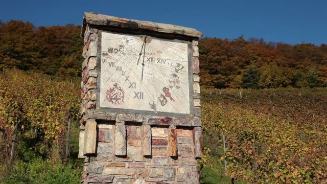 MS View of sundial in vineyard / Rüdesheim, Hesse, Germany