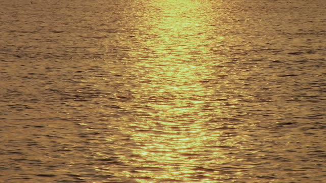 ms view of sunlight reflection on hooghly river water / kolkata, west bengal, india - hooghly river stock videos & royalty-free footage