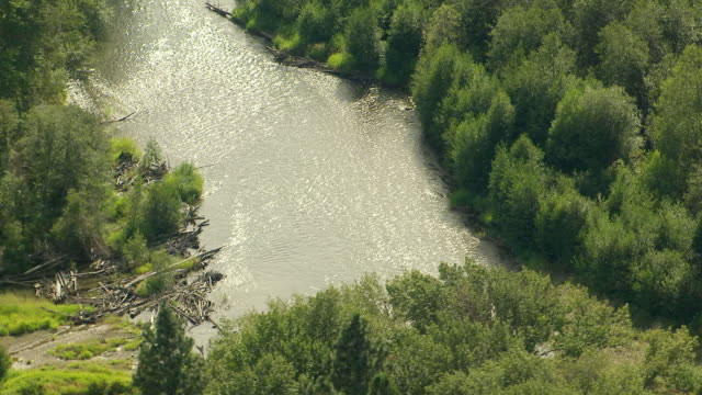 WS AERIAL View of sunlight sparkles on flowing Yakima river / Washington, United States
