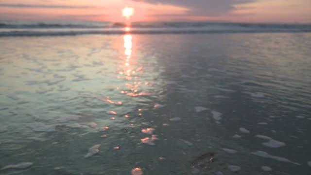 ms view of sunset at beach / st. peter-ording, schleswig holstein, germany   - schleswig holstein stock-videos und b-roll-filmmaterial