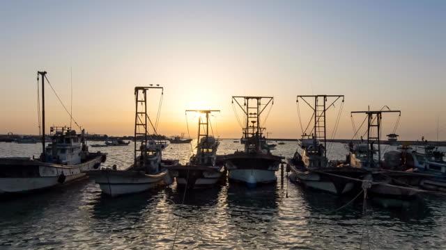 ws t/l view of sunset at hwaseong gungpyeonghang port / hwaseong, gyeonggido, south korea  - small group of animals stock videos & royalty-free footage