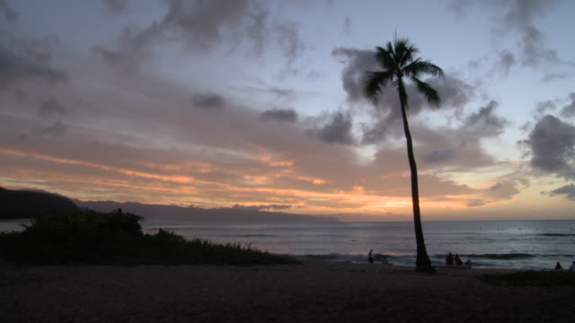 ws t/l view of sunset at ocean / haleiwa, hawaii, united states - oahu stock videos & royalty-free footage