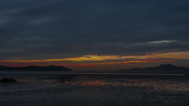 view of sunset at the mud flat in yeongjong-do area - gruppo medio di animali video stock e b–roll