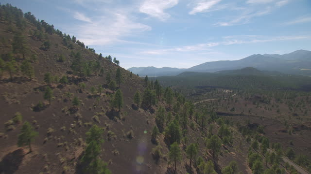 ws aerial pov view of sunset crater volcano national monument with trees on hilly landscape, mountain range in background / flagstaff, arizona, united states - ash tree stock videos & royalty-free footage