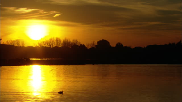 ws view of sunset over marshes / doí±ana national park, huelva & sevilla, spain - andalusien stock-videos und b-roll-filmmaterial