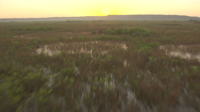ms aerial view of swamps and water towards sunrise behind mountain in collier county / florida, united states - sumpf stock-videos und b-roll-filmmaterial