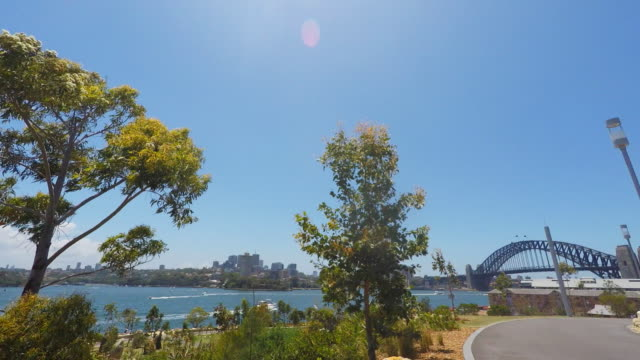 view of sydney harbour bays from the barangaroo reserve - wildlife reserve stock videos & royalty-free footage