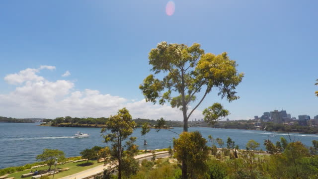 View of Sydney Harbour Bays From the Barangaroo Reserve