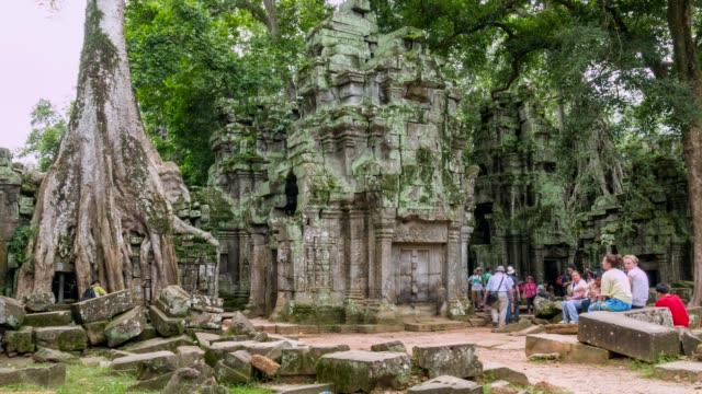 view of ta prohm temple at angkor wat - cambodia stock videos & royalty-free footage