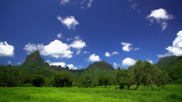 view of tahitian windward mountain range south pacific - französisch polynesien stock-videos und b-roll-filmmaterial