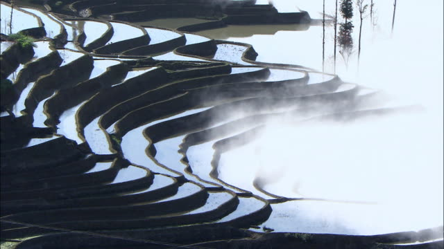 view of terraced rice field in yunnan province, china - rice terrace stock videos and b-roll footage