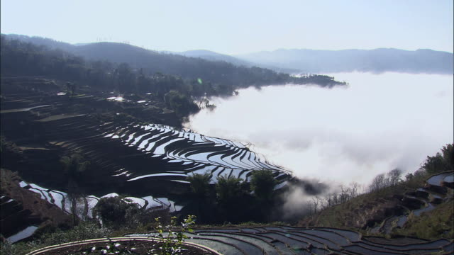 view of terraced rice fields in yunnan province, china - rice terrace stock videos and b-roll footage