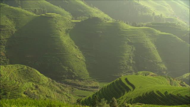 vídeos de stock, filmes e b-roll de view of terraced rice fields in yunnan province, china - yunnan province
