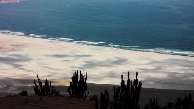 view of the artificial and contaminated beaches of cha–aral, a mining town in northern chile. in the foreground we can see endemic cacti of the... - parque nacional stock videos & royalty-free footage