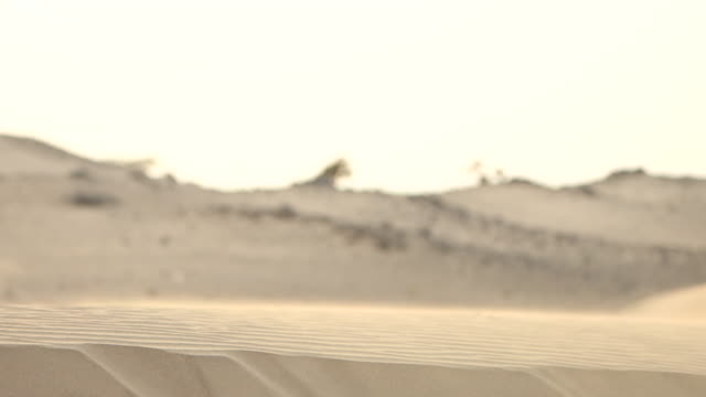 view of the back of a saudi man walking barefoot across a sand dune in the desert. - jiddah点の映像素材/bロール