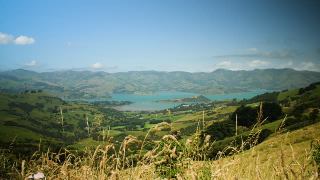 view of the bays of banks peninsula, new zealand - lockdown viewpoint stock videos & royalty-free footage